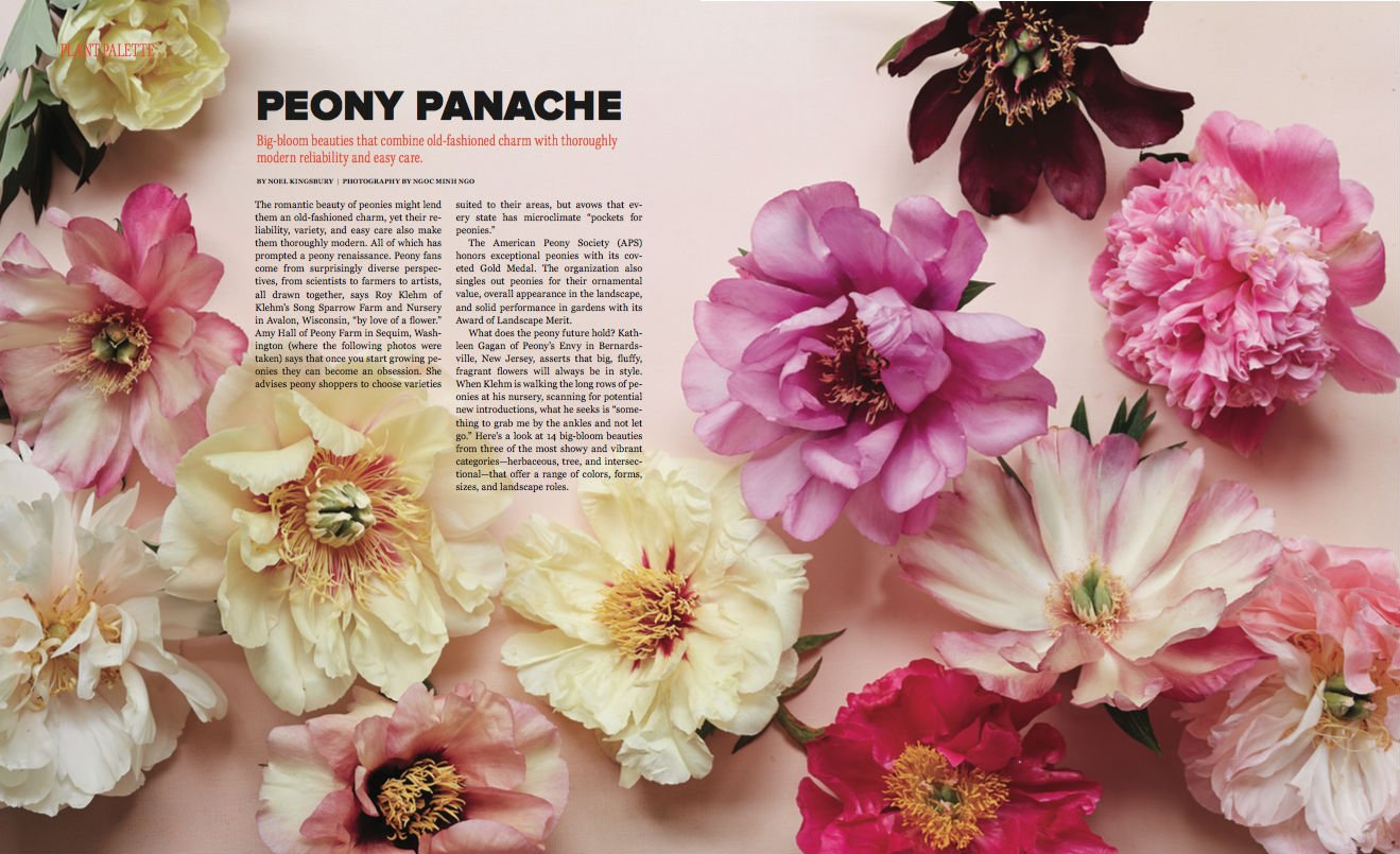 Peony Farm featured in Garden Design Magazine